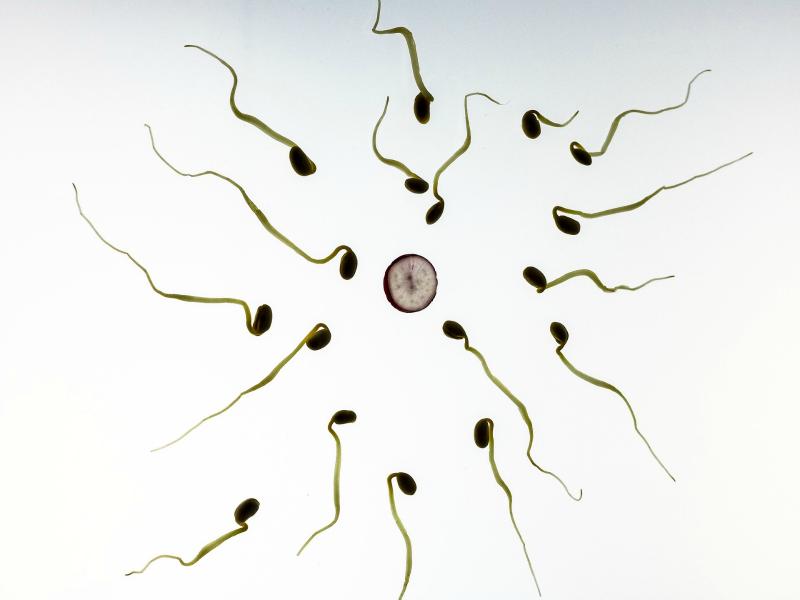 sex-i-bezpieczne-pozycje-seksualne-w-ciąży